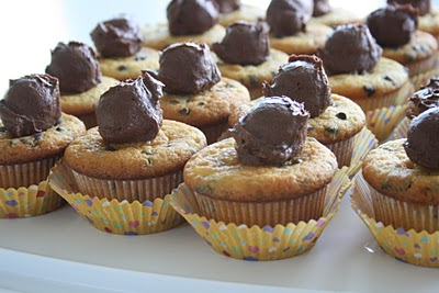 Chocolate Chip Cupcakes With The Best Ever Chocolate